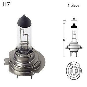 ampoule 207