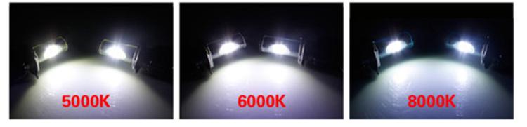 ampoule 5000k