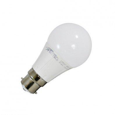 ampoule b 22
