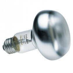 ampoule chauffante