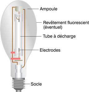 ampoule fluocompacte comment ca marche