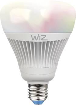 ampoule wiz